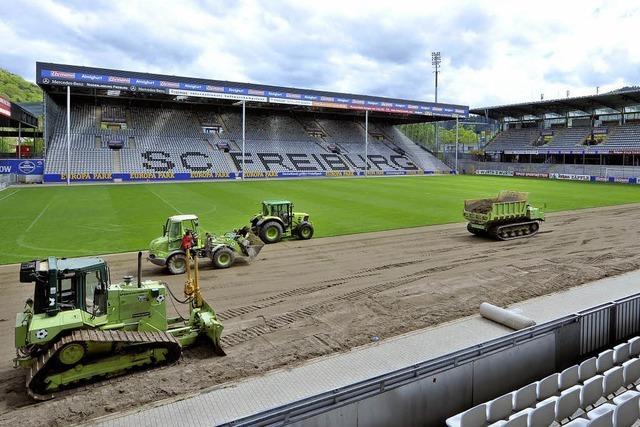 Neues Grün für das SC-Stadion
