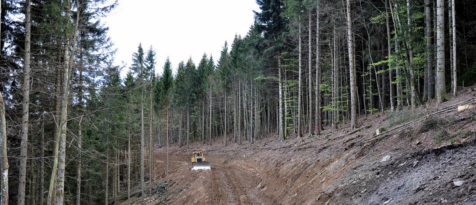 Den Bautrupps für den Tetra-Funkmast a... Blauen wird derzeit der Weg geebnet.   | Foto: privat