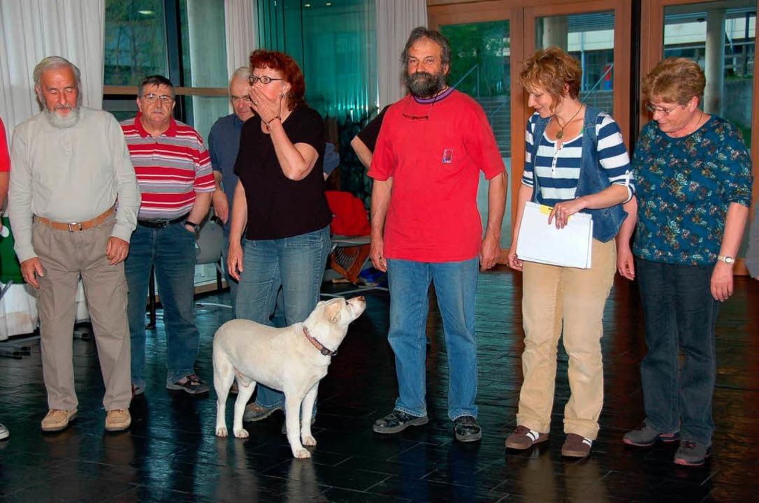 Vom Kettenhund zum Schauspieler: Labra...ve Entwicklung.(2. und 3. von rechts).  | Foto: Binner-Schwarz