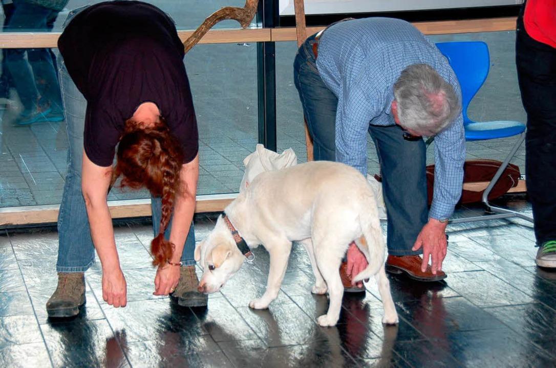 Vom Kettenhund zum Schauspieler: Labra...Probe mit Besitzerin Margrieta Postma.  | Foto: Binner-Schwarz