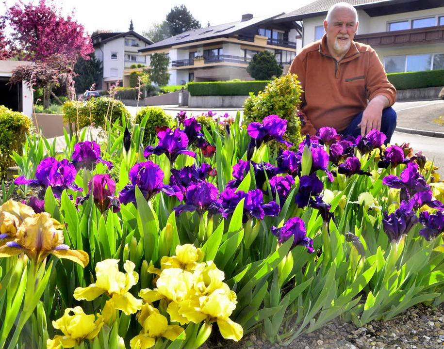 Iris-Experte Helmut Karrer  erhält Anfragen aus der ganzen Welt.  | Foto: Dieter Erggelet