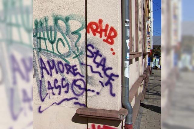 Ehrenamtlicher Kampf gegen illegale Graffiti