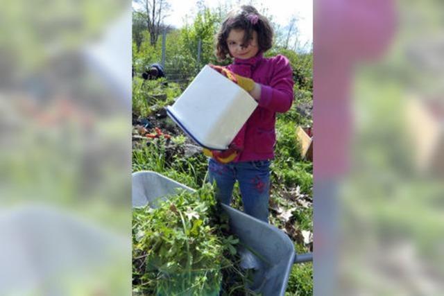 Schulessen mit Alfred Klink: Aus dem Garten auf den Teller
