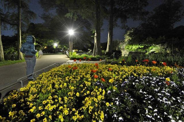 LED-Licht im Stadtgarten