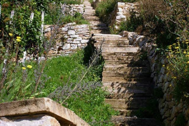 Tour zum Castellberg: Wandern und Weinprobe