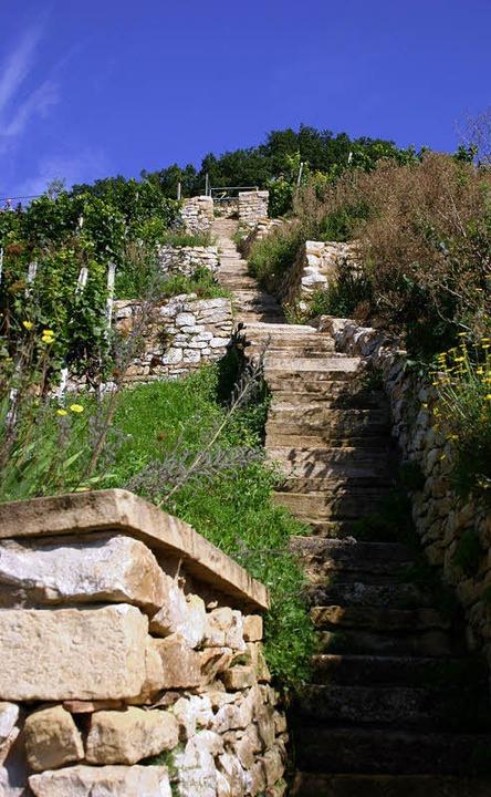 Immer einen  Ausflug wert: der Castellberg mit seinen  Trockenmauern  | Foto: Sabine Model