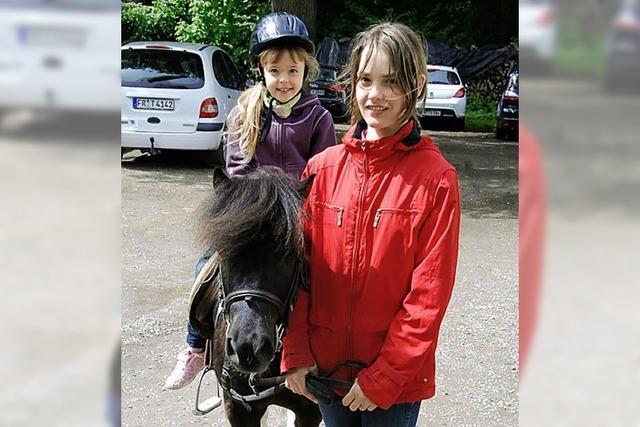 Viel Spaß mit den Pferden
