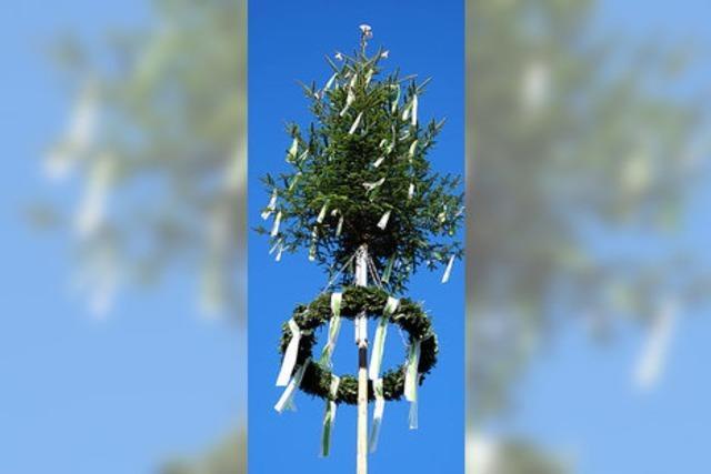Maibaumkrone für Hausen