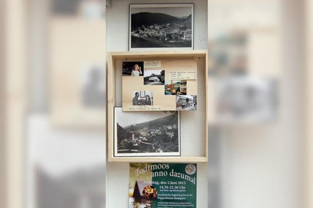 Schaufenster werden zum Fotoalbum