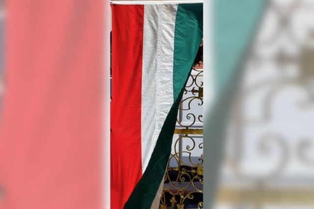 Übersetzungen ungarischer Politik und Poesie