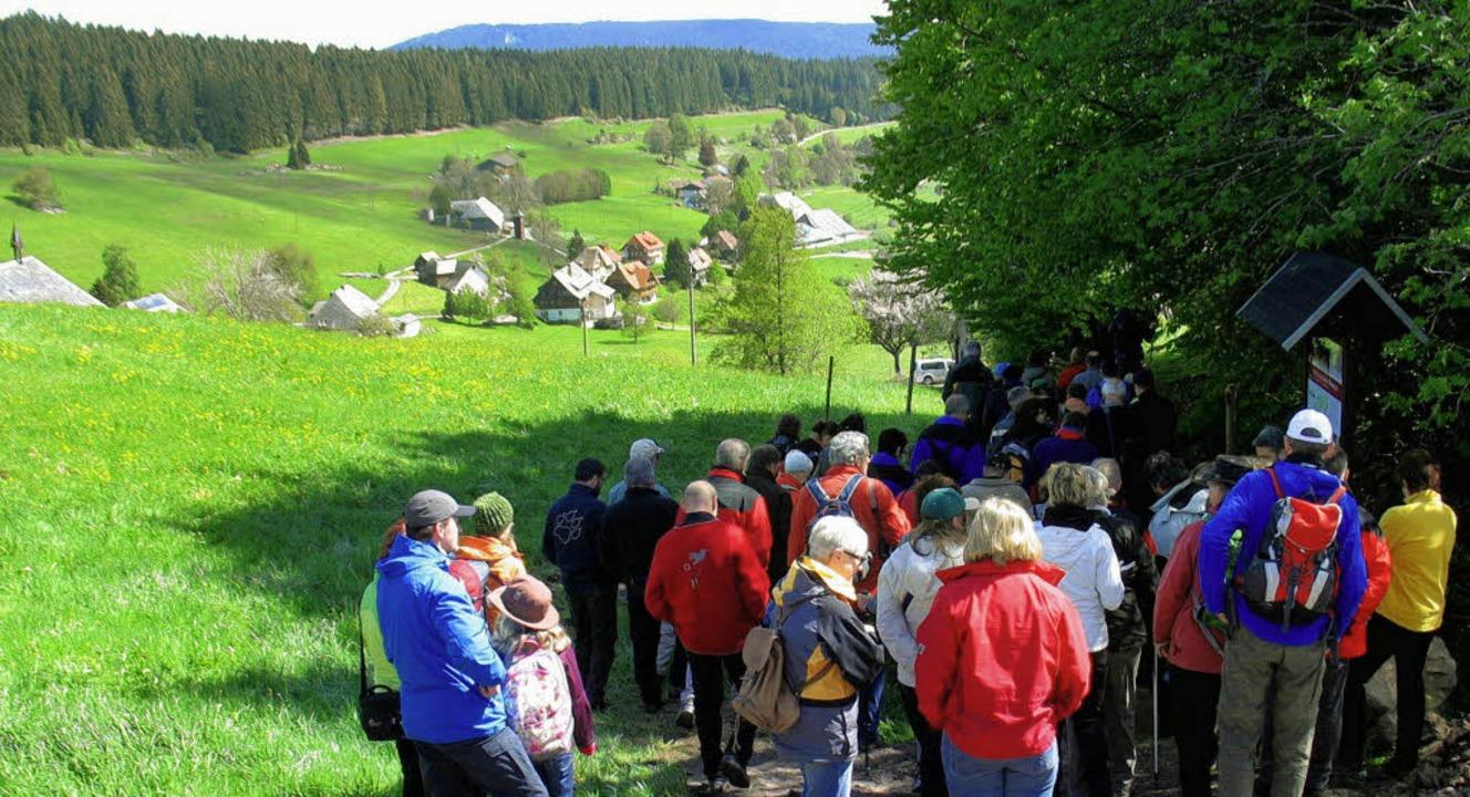 Recht viele Wanderer begaben sich auf den Raitenbucher Hirtenpfad.     | Foto: Manfred-G. Haderer