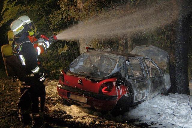 Mit Reh kollidiert: Wagen brannte aus
