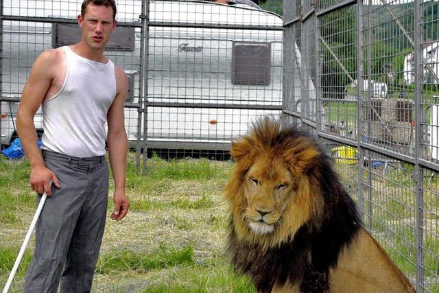 Zirkus und Löwen fühlen sich in der Solvay wohl