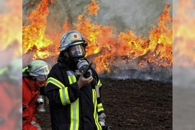 Torfbrände – leicht zu entzünden, schwer zu löschen