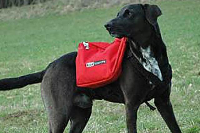 ÜBRIGENS: Hunde-Sherpa
