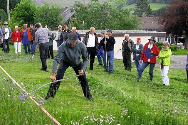 Wenn Sensen das Gras streicheln