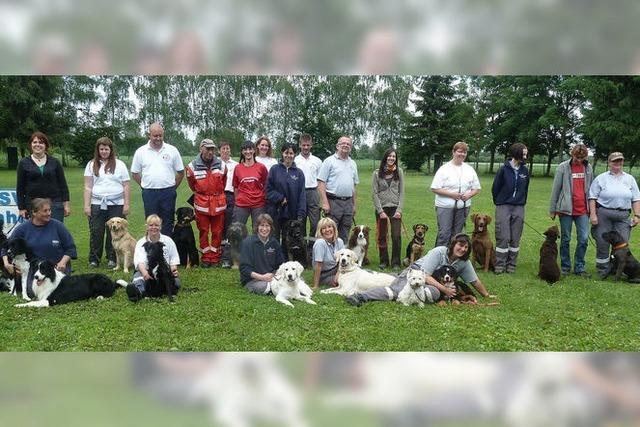 Erster Test für Eignung als Rettungshund