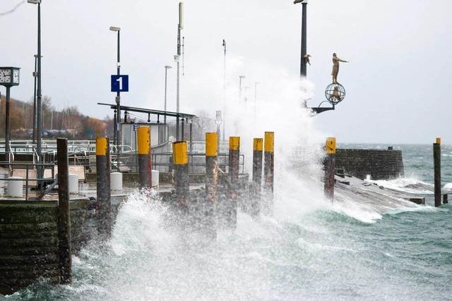 Die Folgen des Klimawandels sind am Bodensee bereits spürbar