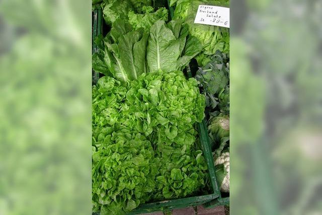 Salat macht fit und ist fast fettfrei