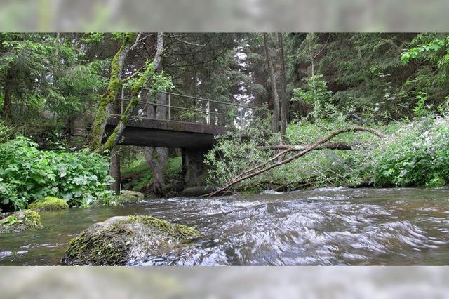 Brüchige Brücke wird saniert