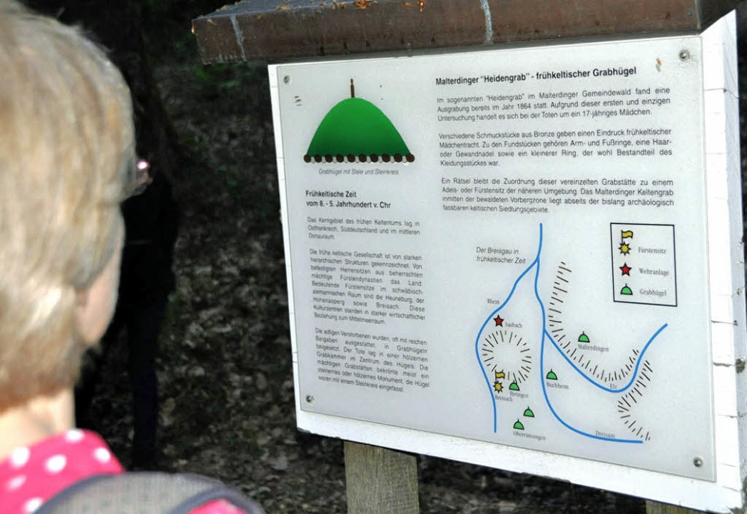 Eine Informationstafel erklärt den Besuchern den keltischen Grabhügel.  | Foto: Hubert Bleyer