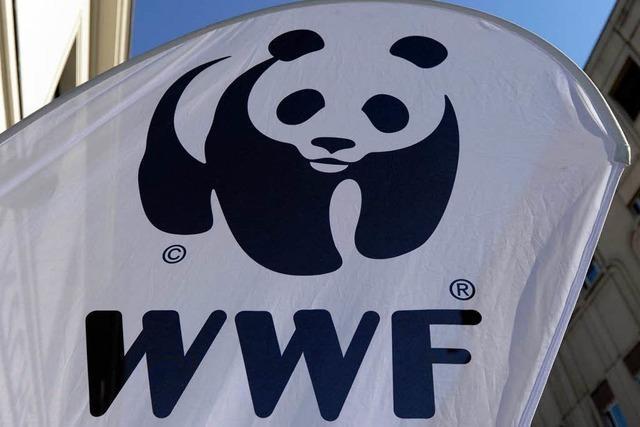 WWF geht auf Konfrontation mit dem Buchhandel