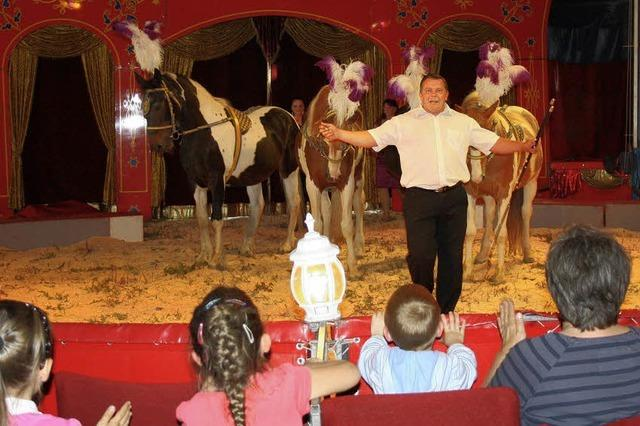 Vergnüglicher Ausflug in die faszinierende Zirkuswelt