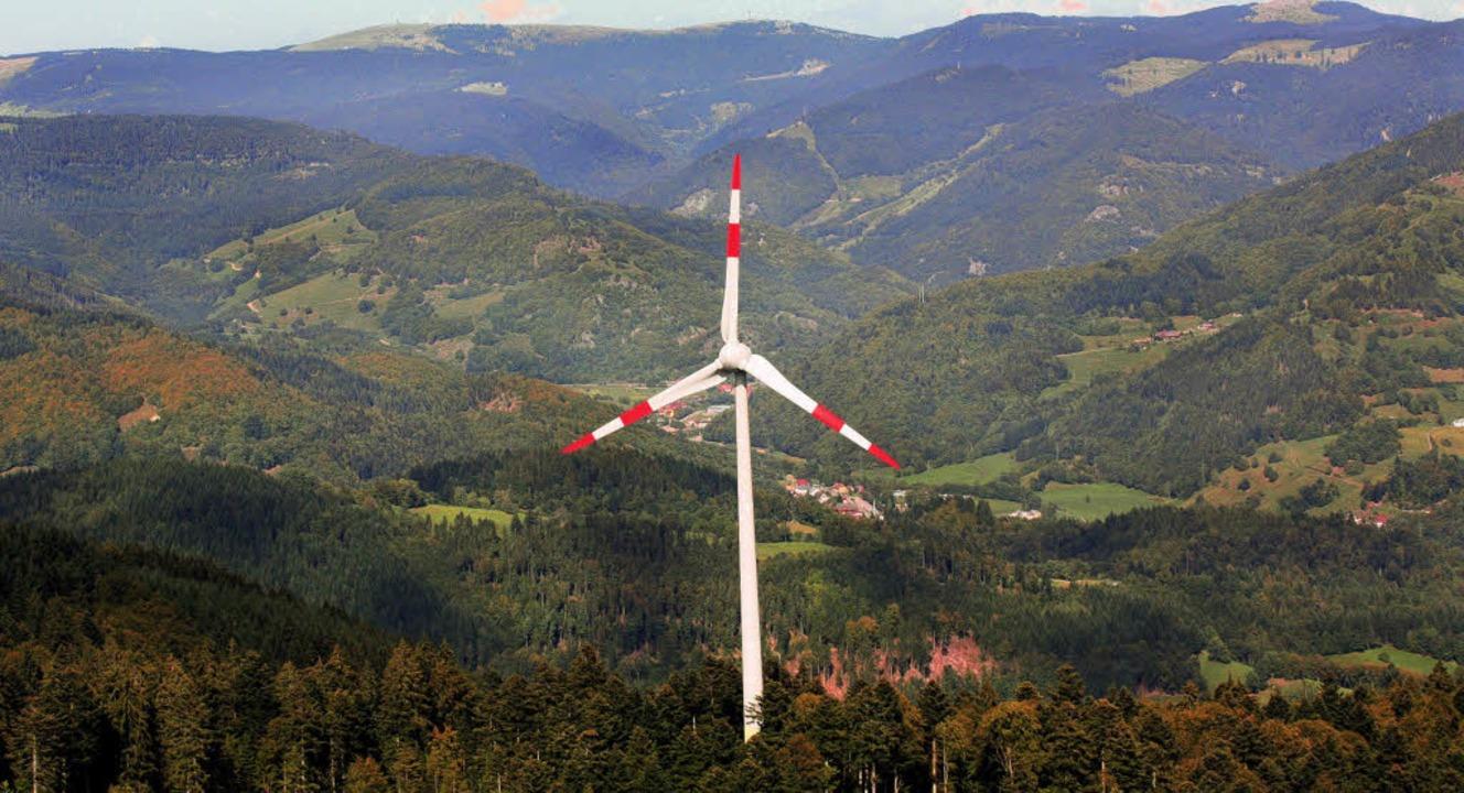 Die Windkraft ist nur eine der alterna...r die es die Weichen zu stellen gilt.     Foto: Erich Meyer