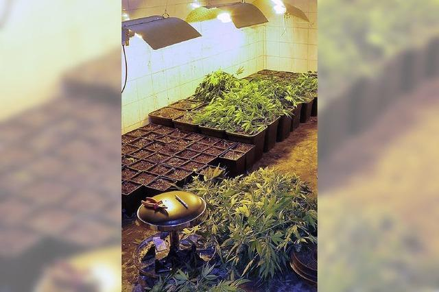 Ein Kilogramm Marihuana
