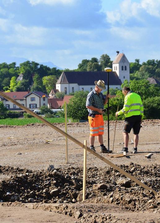 Vor der Kulisse von Gottenheim stecken...harfußwalze an einem Werktag zurecht.   | Foto: manfred frietsch
