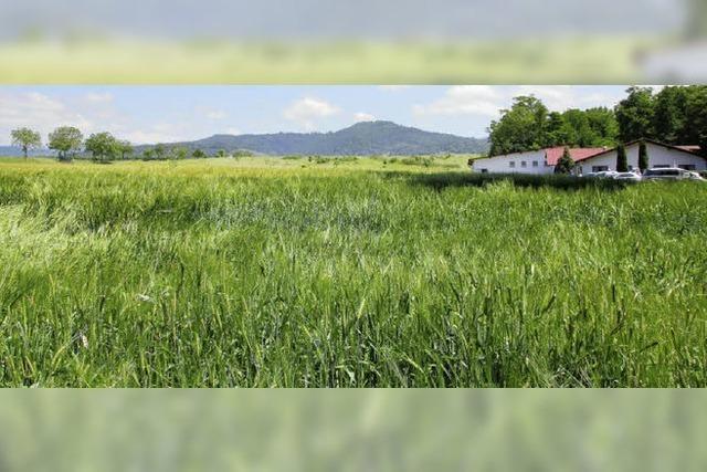 Landwirtschaft soll erneut Gewerbe weichen