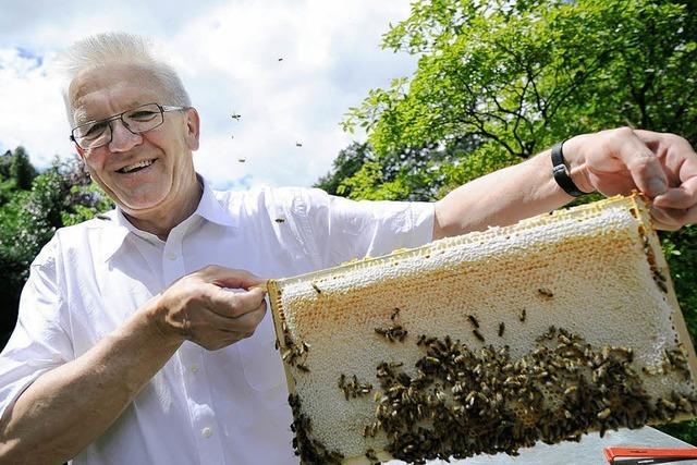 Ohne Biene keine Bestäuben, ohne Bestäuben kein Obst