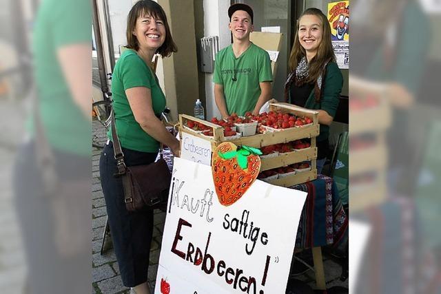 Frische Erdbeeren fürs Centro La Bota