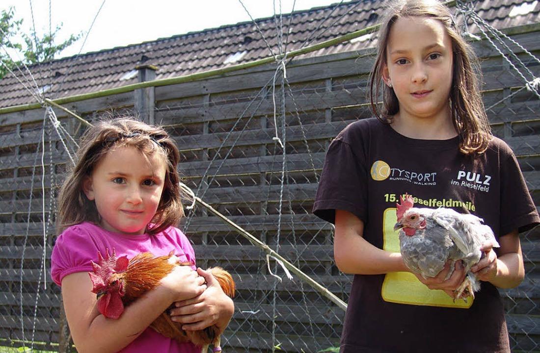 Auf dem Bibilisfest des Kleintierzücht...nie  ihre selbst aufgezogenen Hühner.     Foto: kati wortelkamp