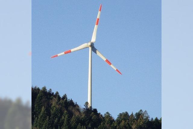 Bis zu zehn Windräder möglich