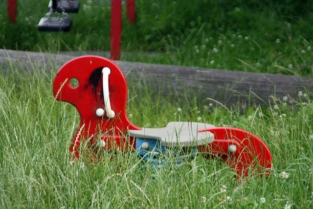 Eltern klagen über Hundehaufen, Brennnesseln und Zecken auf dem Spielplatz in Harpolingen