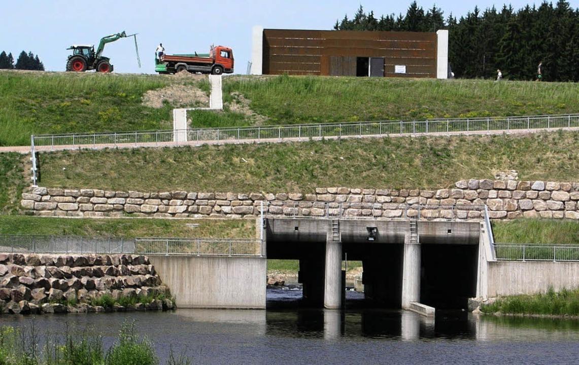 Das Rückhaltebecken Wolterdingen hat 2...nt dieser Summe, 70 Prozent das Land.   | Foto: petra walheim
