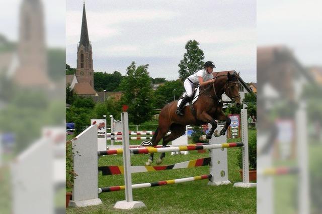 700 Reiter und mehr als 430 Pferde