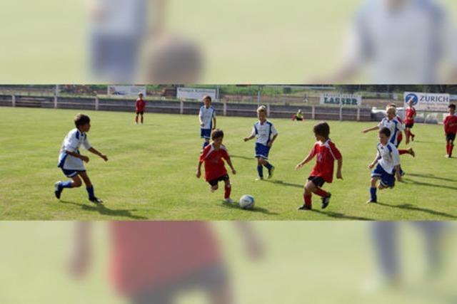 Drei Tage lang übte sich der Fußballnachwuchs im Kickwettstreit