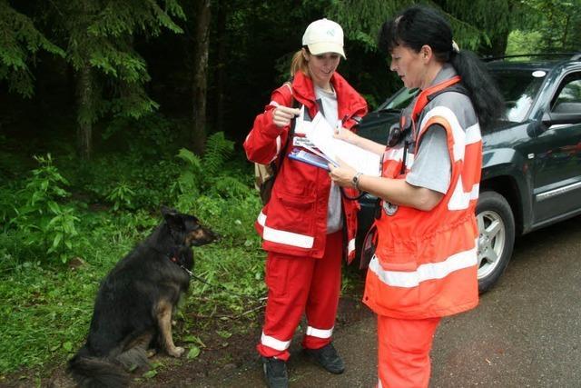Rettungskräfte suchen nach vermisstem Pilzsammler
