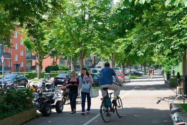 Radwege den Radfahrern