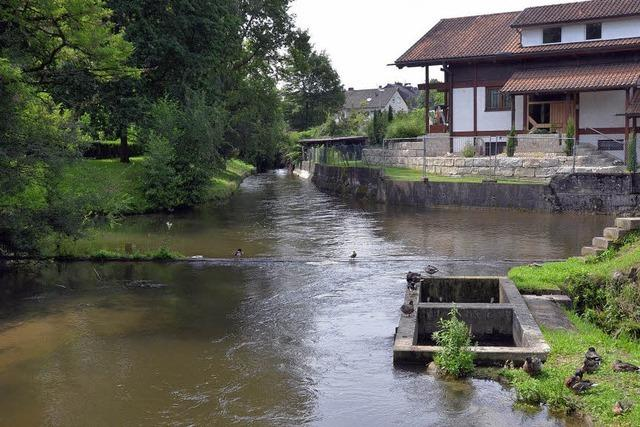 Zweites Wasserrad im Park
