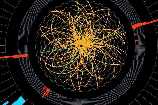 Physiker zu Higgsteilchen: