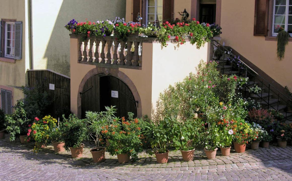 Die Stadt will sich der Kommission von...le von ihrer blühendsten Seite zeigen.    Foto: Stadt Ettenheim