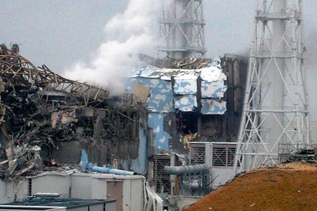 Katastrophe von Fukushima hätte verhindert werden können