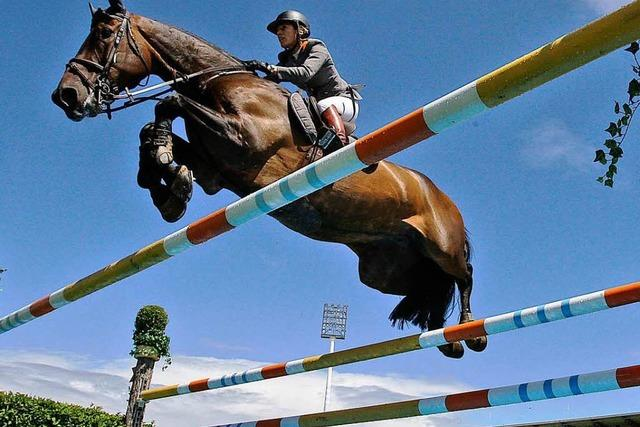 Deutsche Reiter fahren optimistisch zu Olympia