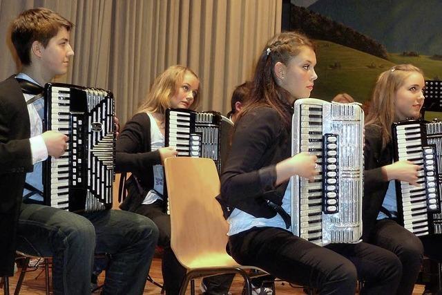 Harmonikamusik, die begeistert