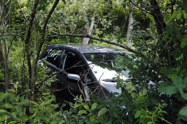 Auto auf Abwegen – ins Unterholz gerollt