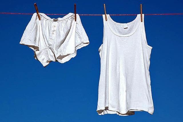 DIE SPINNEN, DIE RÖMER: Kein Waschgang ohne Eintrag