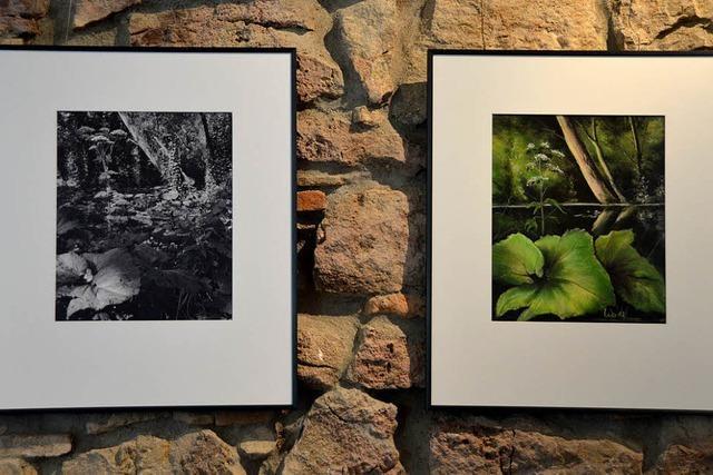 Kunstscheune Bremgarten: Schwarz-Weiß trifft Pastell